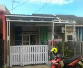 Rumah dan taman rangka baja atap spandek