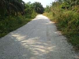 Kebun sawit-MS 120 Ha,Sungai Pinang, SKGR