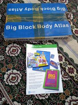 ETLhomelearning. com - Big Block Body Atlas