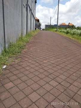 Tanah Berlokasi Anggungan Lukluk Badung Bali Dekat Ke Puspem,RS Kapal,