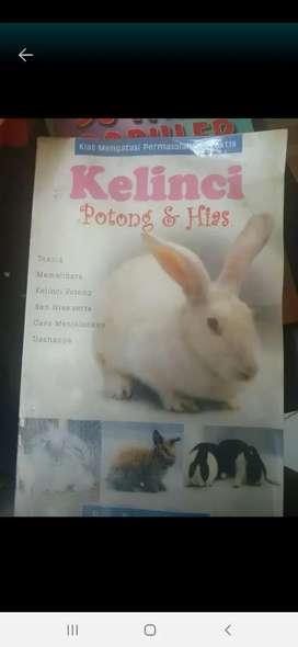 Buku kelinci tips trick peliharaan