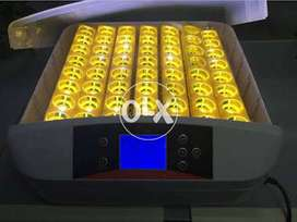 Poultry 56 Egg Turning Incubator-1 Year Warranty-FREE Cash On Delivery