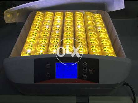 Poultry 56 Egg Turning Incubator-1 Year Warranty-FREE Cash On Delivery 0