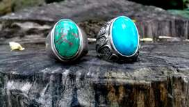 Pirus persia blue and green mantap