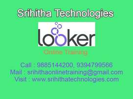 Looker BI Online Training