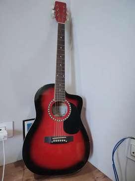 Dolphin Original Guitar