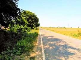 Road side plot For rent School, Dr Medical clinic, Market & Godam etc