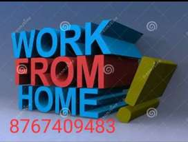 Hiring For back office Executive Part Time Home Based Work