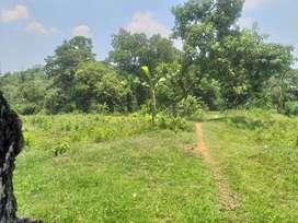 Jual tanah 3900m2 dekat perumahan keandra