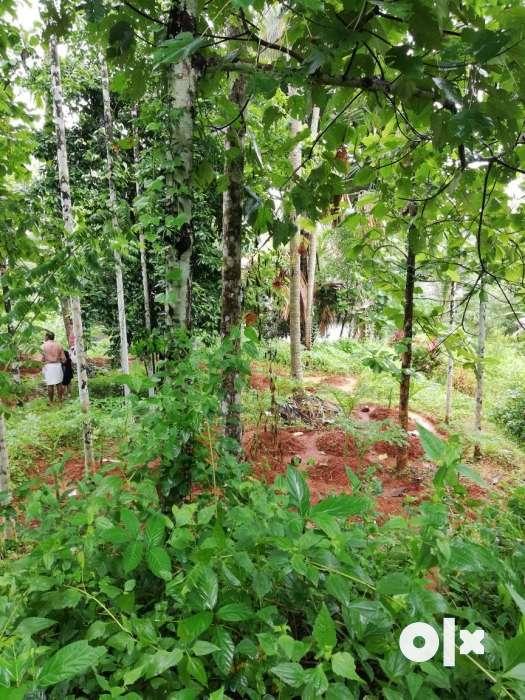 land for sale near melatur town