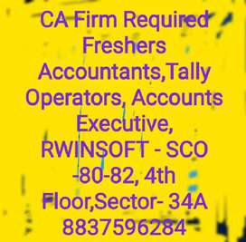 CA Firm Required Freshers Tally Operators, Accounts Executive,