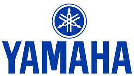 We Have Fantastic Opening For Yamaha group of Company's in Chennai