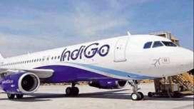 Air ticketing Job