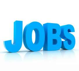 FEMALE OFFICE COORDINATOR REQUIRED[MS OFFICE & MS EXCEL KNOWING]