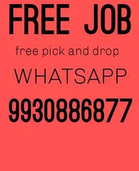 Free job WhatsApp me