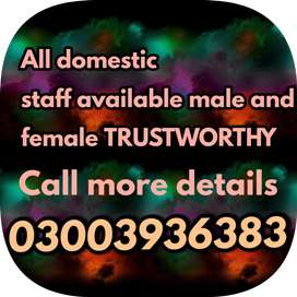 Male and female staff available full guaranty all pk