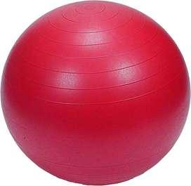 Gym Ball 1 pice