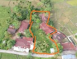 Dijual Tanah 1545m bisa ambil kaplingan atau seluruhnya