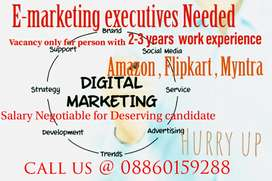 E marketing executive Needed Urgently for a government registered co