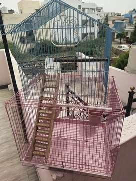 double storey Bird Cage