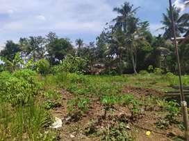 Tanah Lokasi Strategis di Tasikmalaya