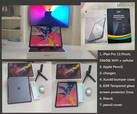 iPad Pro 256GB WiFi + Cellular