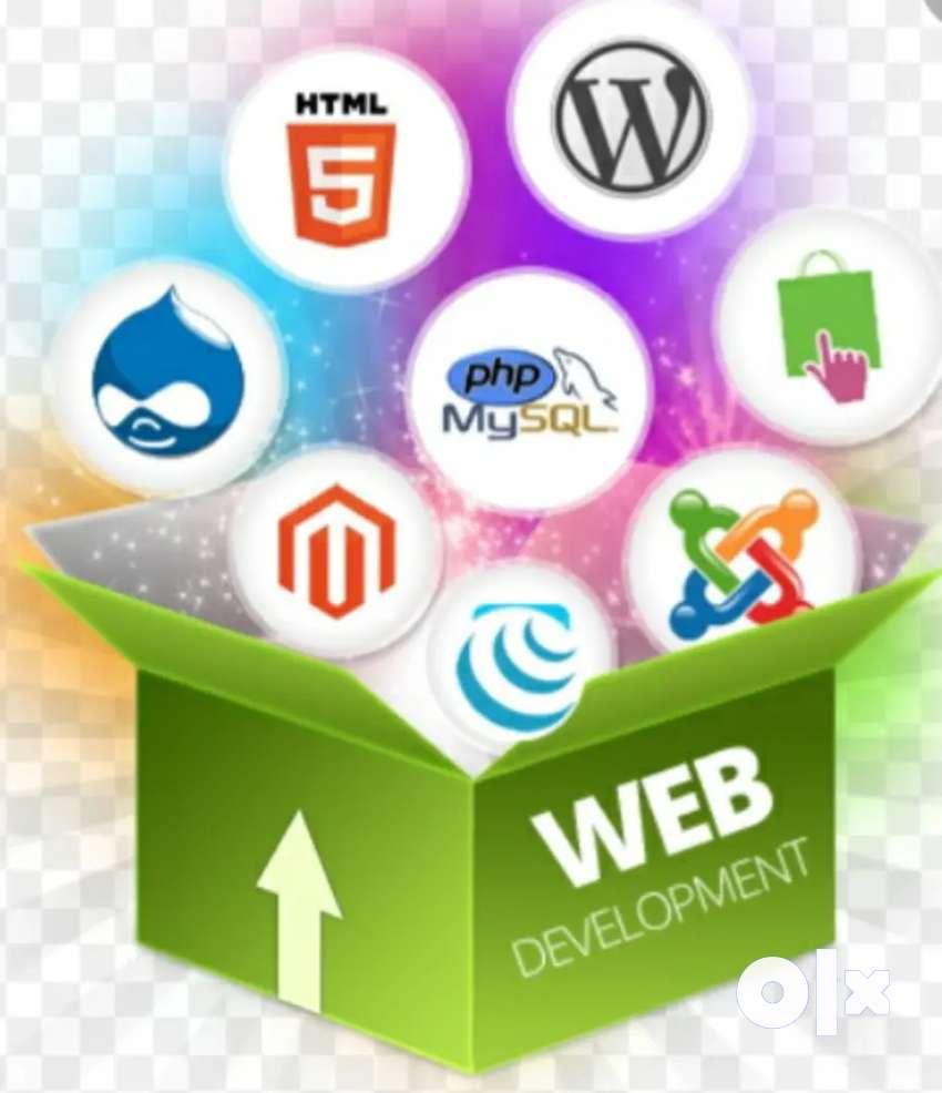 Vaccancy for Website designer and Digital Marketing