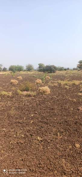 agricultural land for sale at omerga 2 acre
