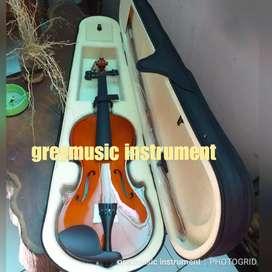 Violin greymusic seri 408