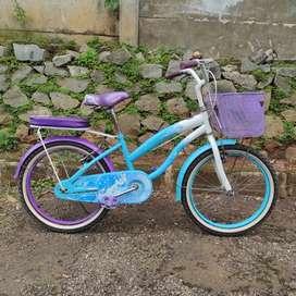 Sepeda Family Spark roda 20
