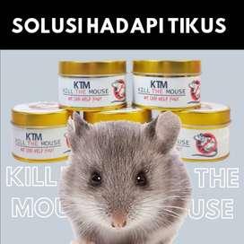2. Pembasmi tikus cocok untuk di gudang kos rumah kantor kontrakan ruk