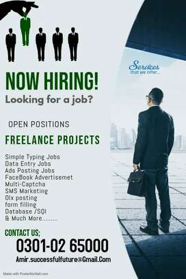 Home base Data Entry Job / Part time, in Pakistan