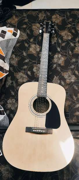 Fender Guitar in best price