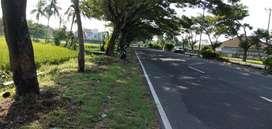 Tanah di pinggir jalan raya Kuripan Lombok Barat