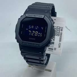 G-Shock DW 5600BB/HR-1DR Original