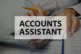 Accounts Assistant for a CA firm