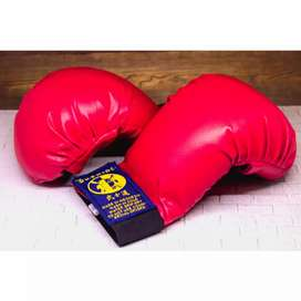 Hand Protector Atau Pelindung Tangan Beladiri Karate