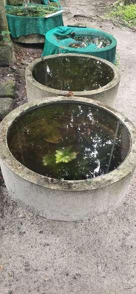 Fish tank or water tank