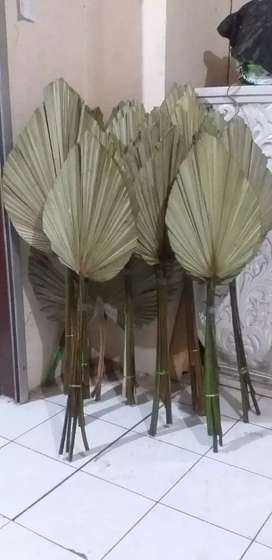 Palm kipas kering pelengkap dekorasi(ready)