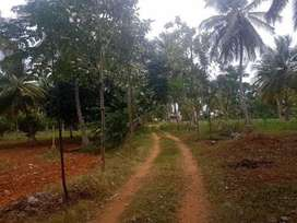 Land in valakkavu, thrissur