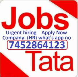 Urgent hiring process Apply Male Female Candidate