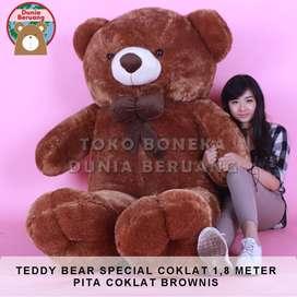 Teddy Bear Coklat Special 1,8 Meter Pita Coklat Brownis