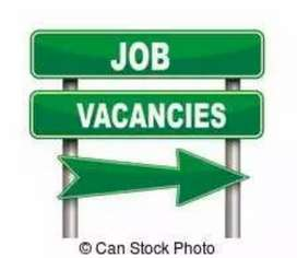 2019-20 male and female job vacancy