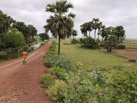 Farmhouse far from city noise and pollution