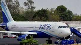 Hiring position of Ground staff Air Ticketing GroundStaff Cabin Crew