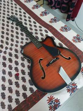 Hobmer Guitar with Cover