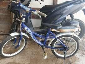 Sepeda anak cewek uk.16,minus pemakaian ja