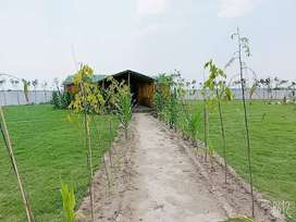 organic farms,farmlands,farmhouse,green beauty,sainik farms in noida