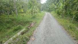 Tanah Investasi 6020 m2 di Patikraja Banyumas
