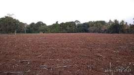 Tanah Ladang Luas Cocok Untuk Perumahan dan Taman Wisata